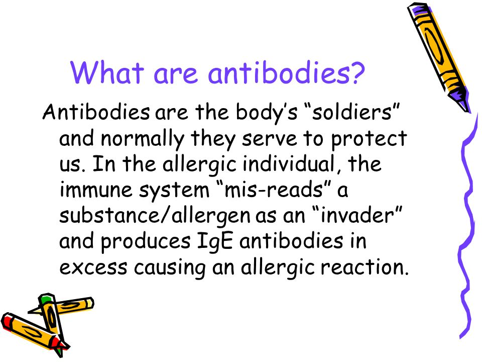 What are antibodies