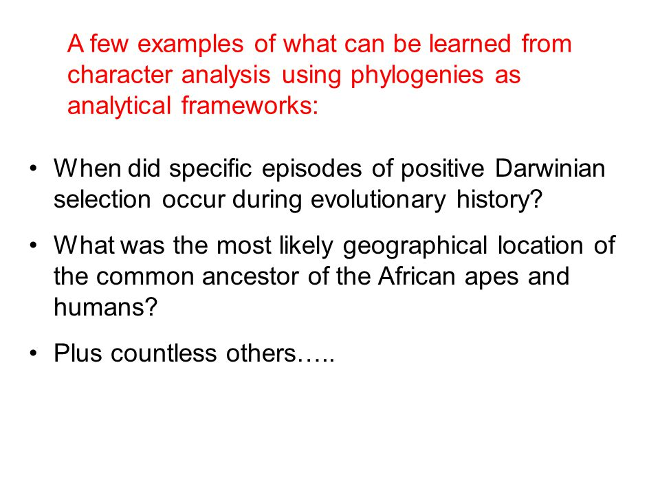 A few examples of what can be learned from character analysis using phylogenies as analytical frameworks: