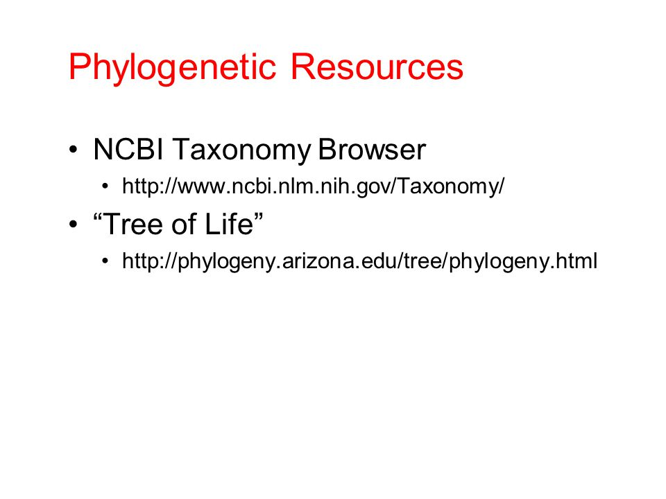 Phylogenetic Resources