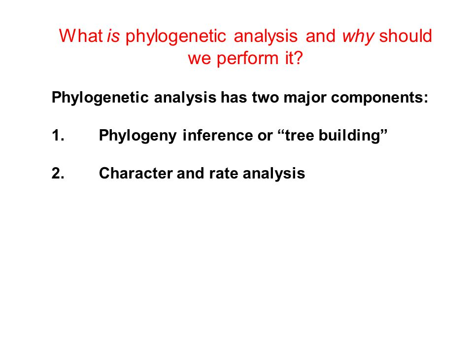 What is phylogenetic analysis and why should we perform it