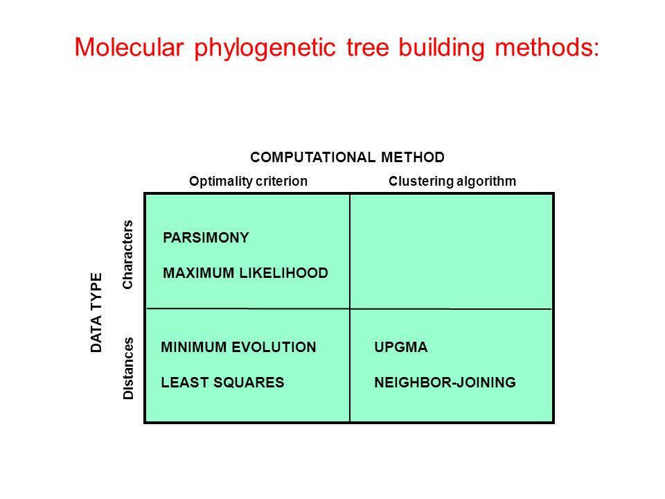 Molecular phylogenetic tree building methods: