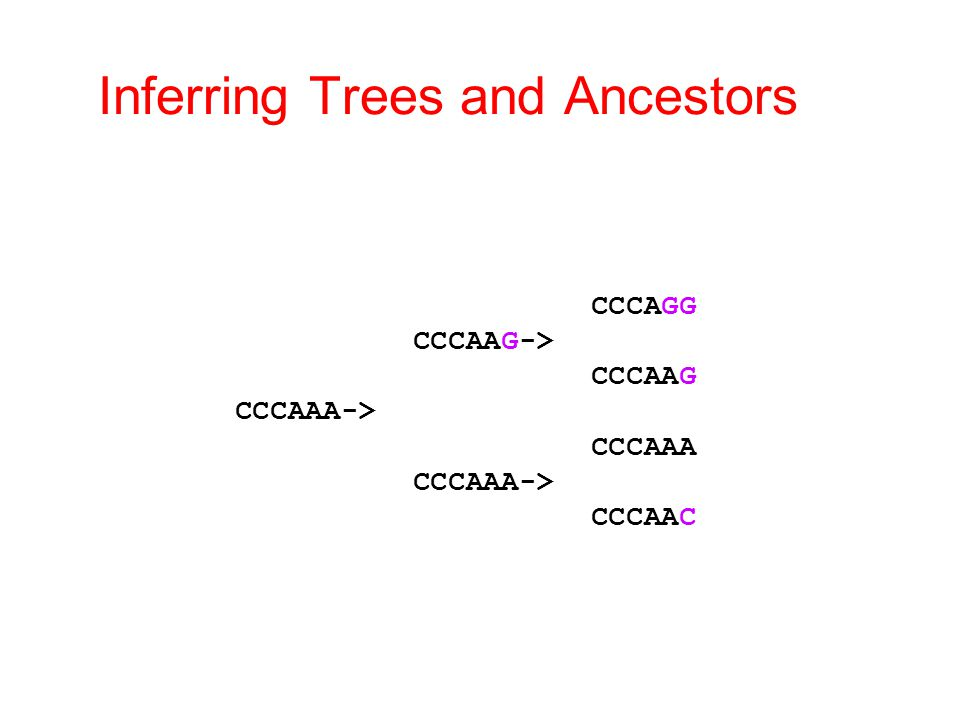 Inferring Trees and Ancestors