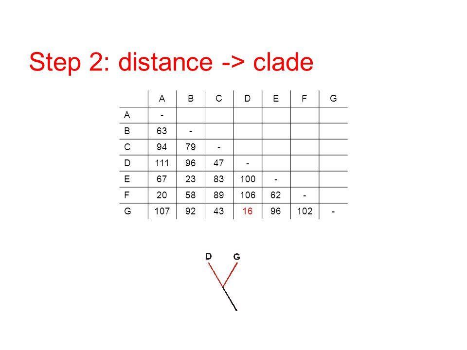 Step 2: distance -> clade