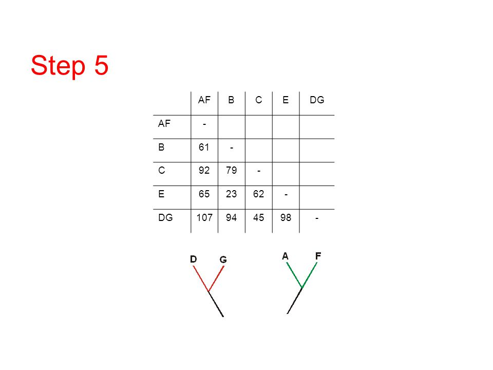 Step 5 AF B C E DG - 61 92 79 65 23 62 107 94 45 98 DNA/RNA overview