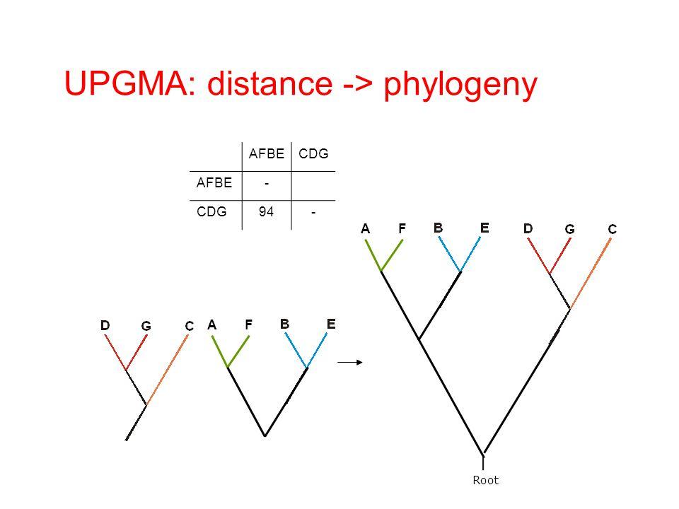 UPGMA: distance -> phylogeny