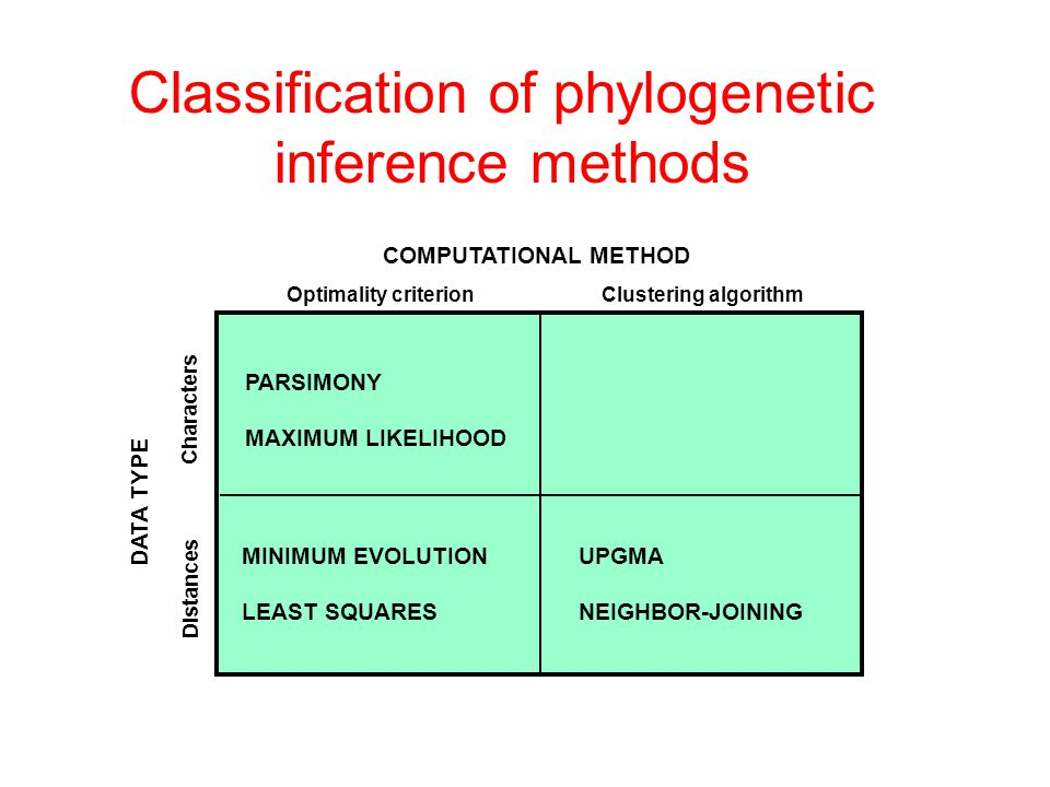 Classification of phylogenetic