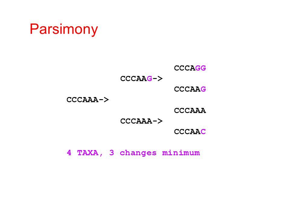 Parsimony CCCAGG CCCAAG-> CCCAAG CCCAAA-> CCCAAA CCCAAC