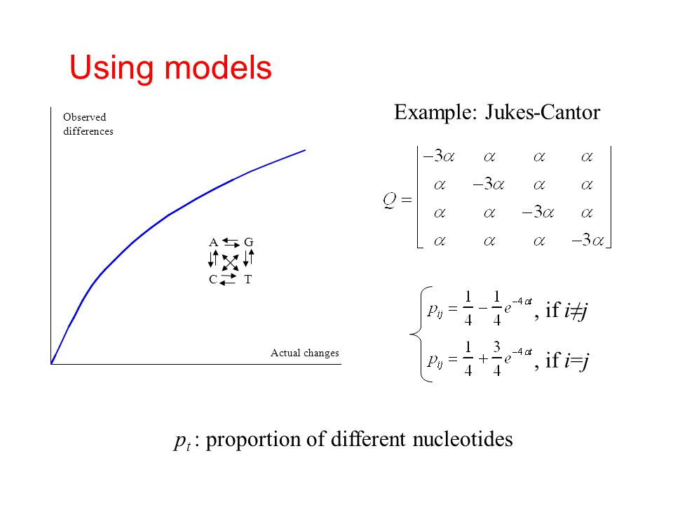 Using models Example: Jukes-Cantor , if i≠j , if i=j