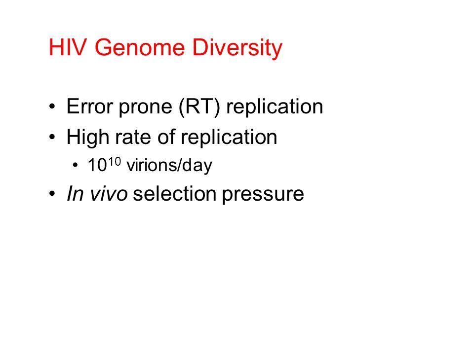 HIV Genome Diversity Error prone (RT) replication