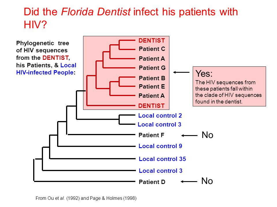 Did the Florida Dentist infect his patients with HIV