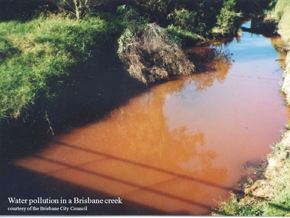 Water pollution in a Brisbane creek