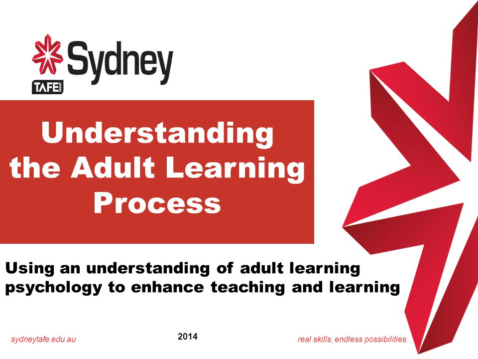 the Adult Learning Process