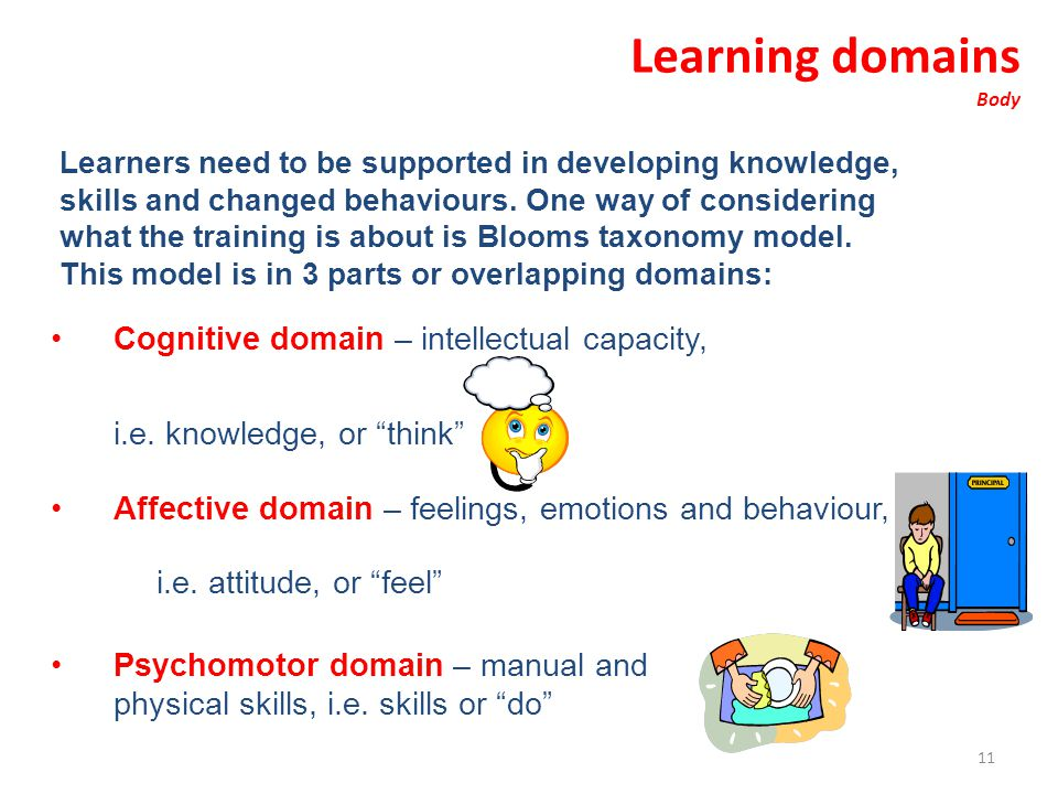 Learning domains Cognitive domain – intellectual capacity,