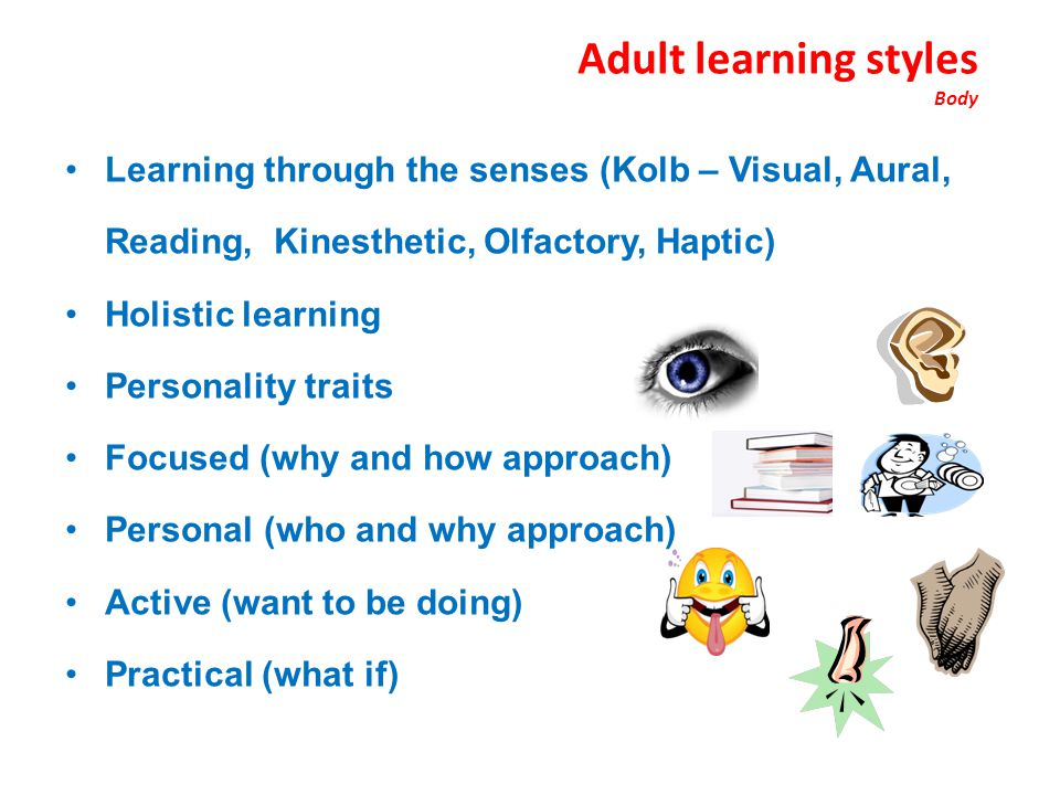Adult learning styles Body
