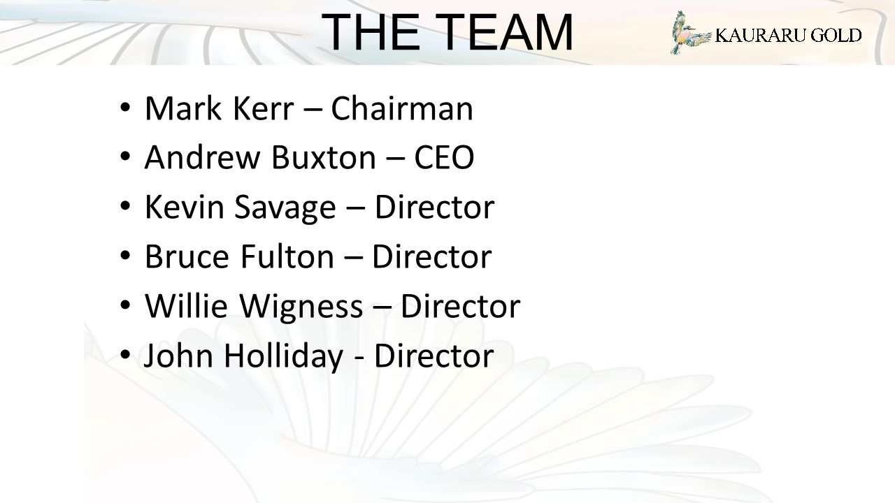 THE TEAM Mark Kerr – Chairman Andrew Buxton – CEO