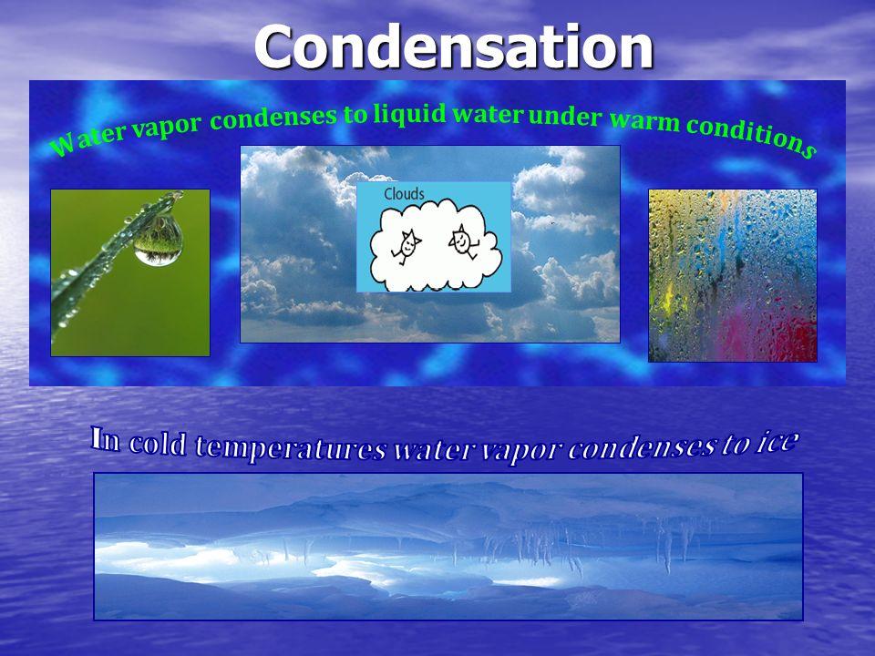 Condensation Water vapor condenses to liquid water under warm conditions.