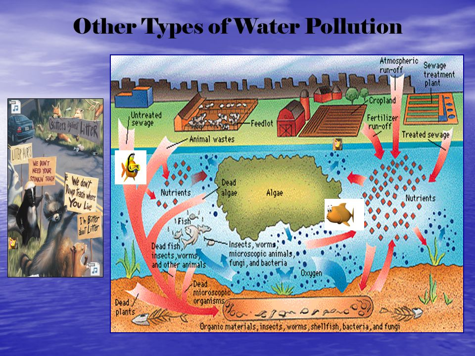 Other Types of Water Pollution