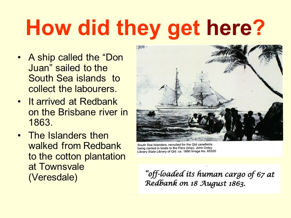 How did they get here A ship called the Don Juan sailed to the South Sea islands to collect the labourers.