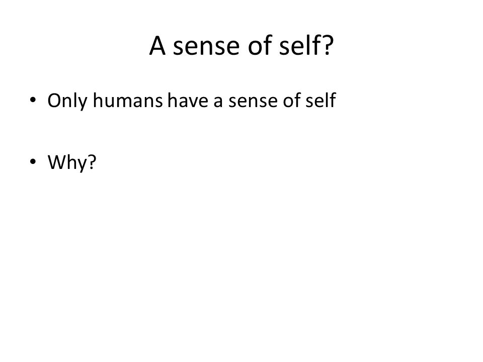 A sense of self Only humans have a sense of self Why