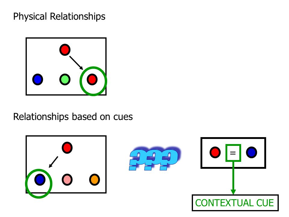 Physical Relationships Relationships based on cues =