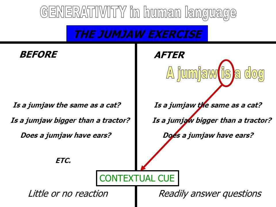 GENERATIVITY in human language