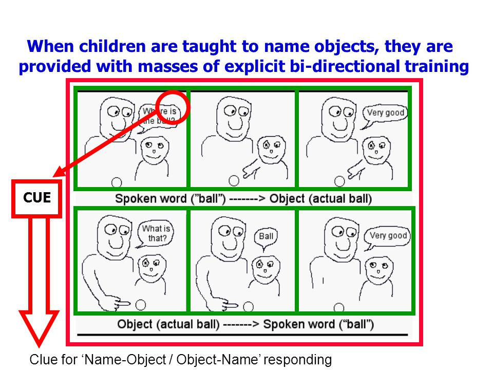 When children are taught to name objects, they are