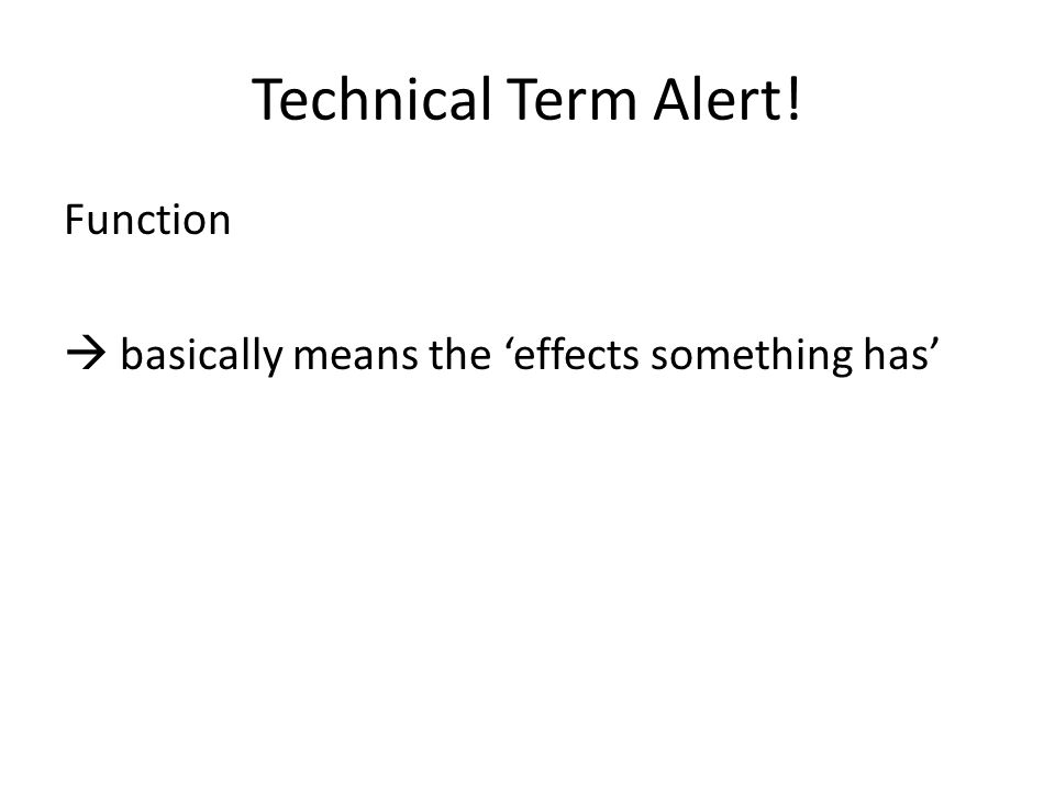 Technical Term Alert! Function