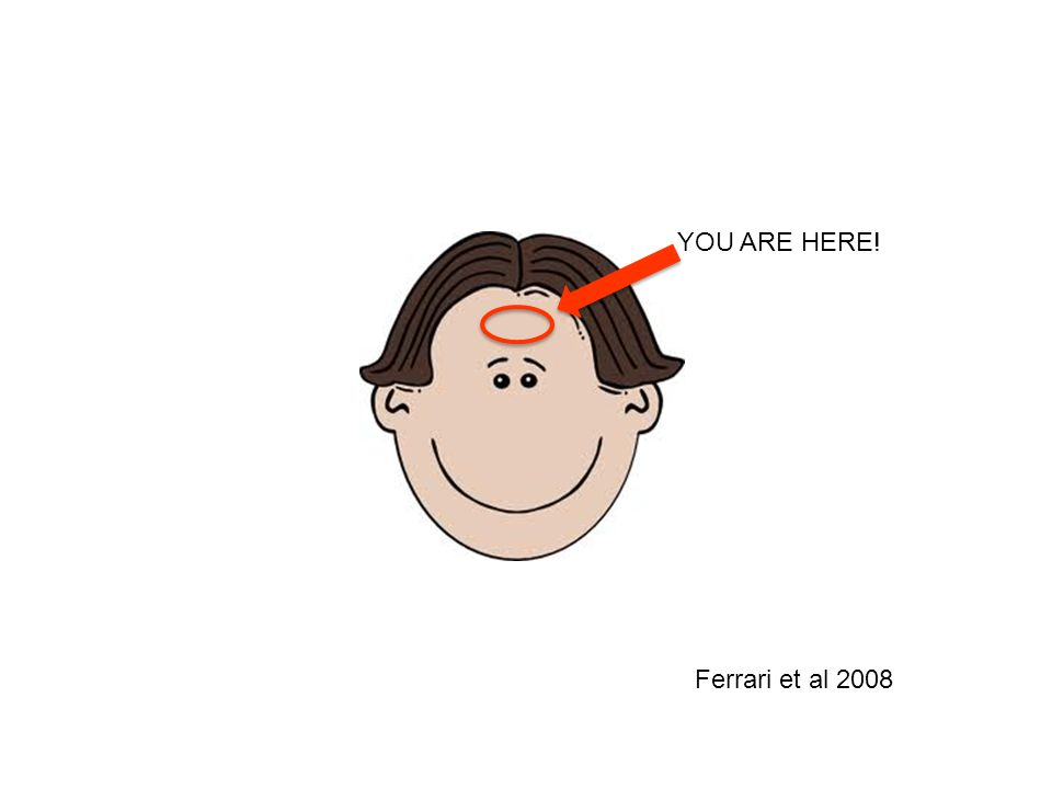 YOU ARE HERE! Ferrari et al 2008