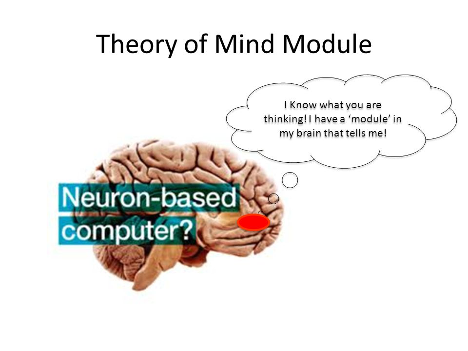 Theory of Mind Module I Know what you are thinking! I have a 'module' in my brain that tells me!