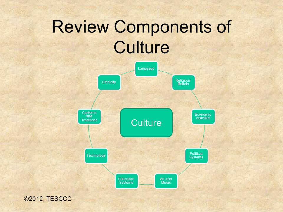 Review Components of Culture