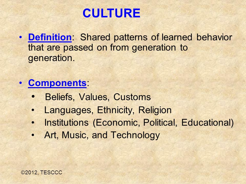 CULTURE Beliefs, Values, Customs
