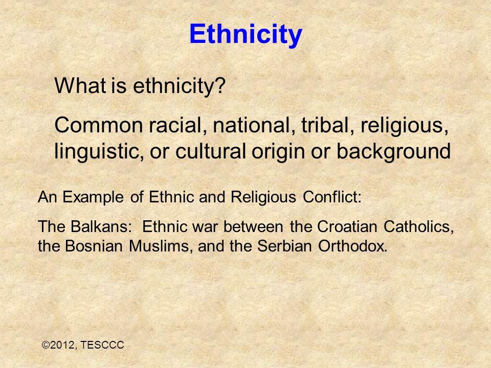 Ethnicity What is ethnicity