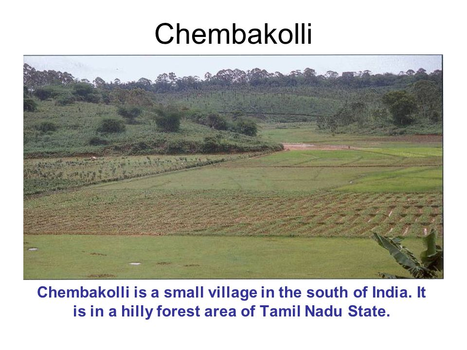 Chembakolli Chembakolli is a small village in the south of India.