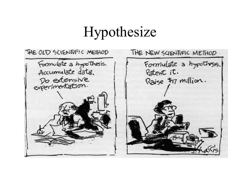 Hypothesize
