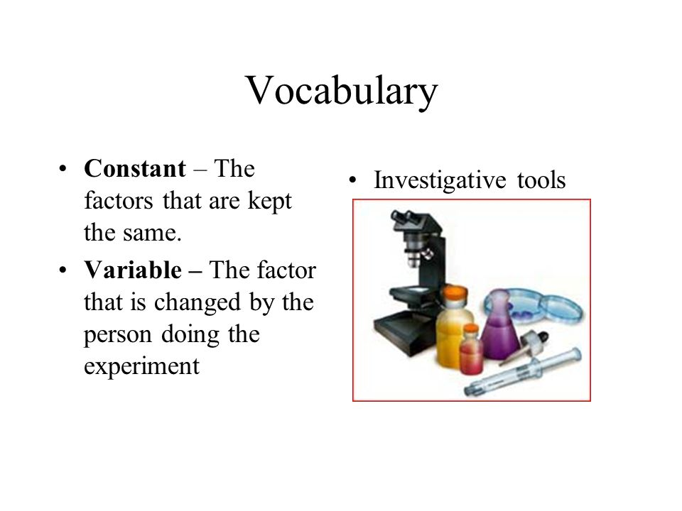 Vocabulary Constant – The factors that are kept the same.