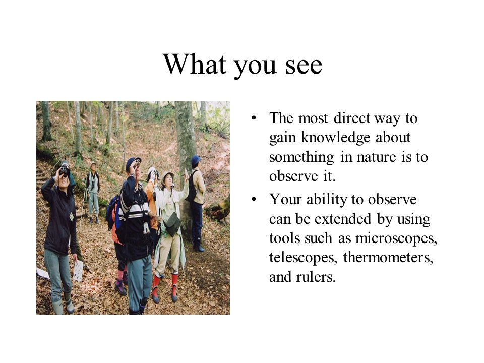What you see The most direct way to gain knowledge about something in nature is to observe it.