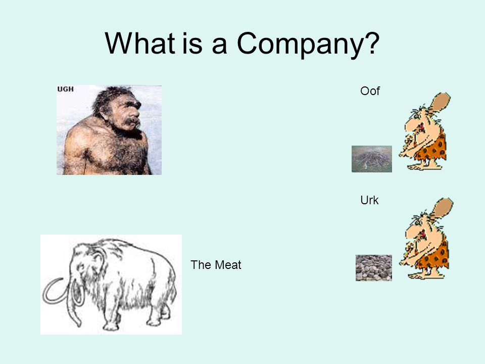 What is a Company Oof Urk The Meat