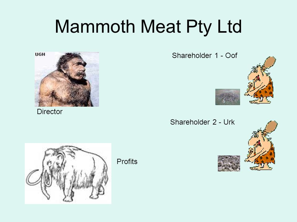 Mammoth Meat Pty Ltd Shareholder 1 - Oof Director Shareholder 2 - Urk