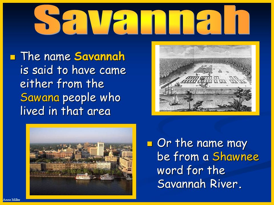 Savannah The name Savannah is said to have came either from the Sawana people who lived in that area.
