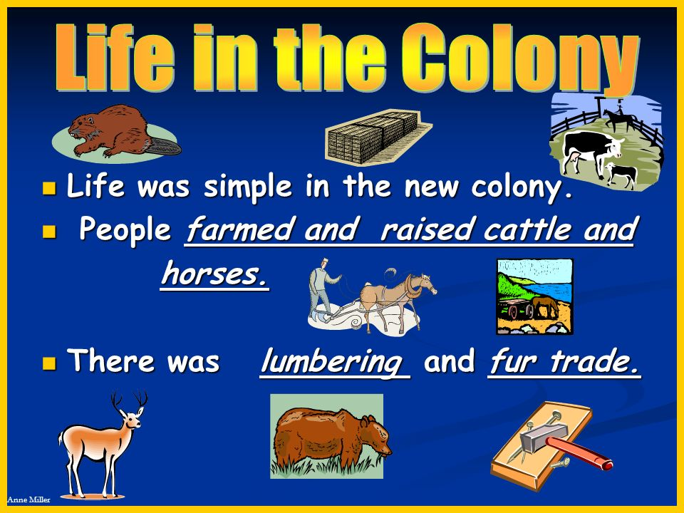 Life in the Colony Life was simple in the new colony.