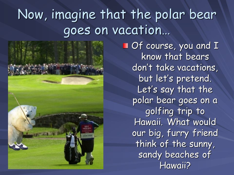 Now, imagine that the polar bear goes on vacation…