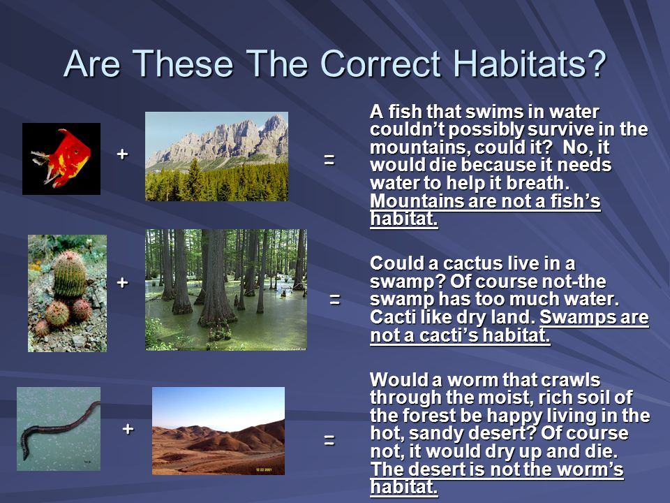 Are These The Correct Habitats