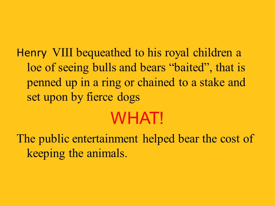 Henry VIII bequeathed to his royal children a loe of seeing bulls and bears baited , that is penned up in a ring or chained to a stake and set upon by fierce dogs