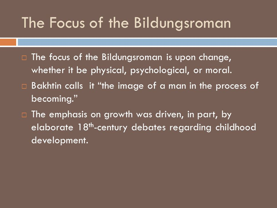 The Focus of the Bildungsroman