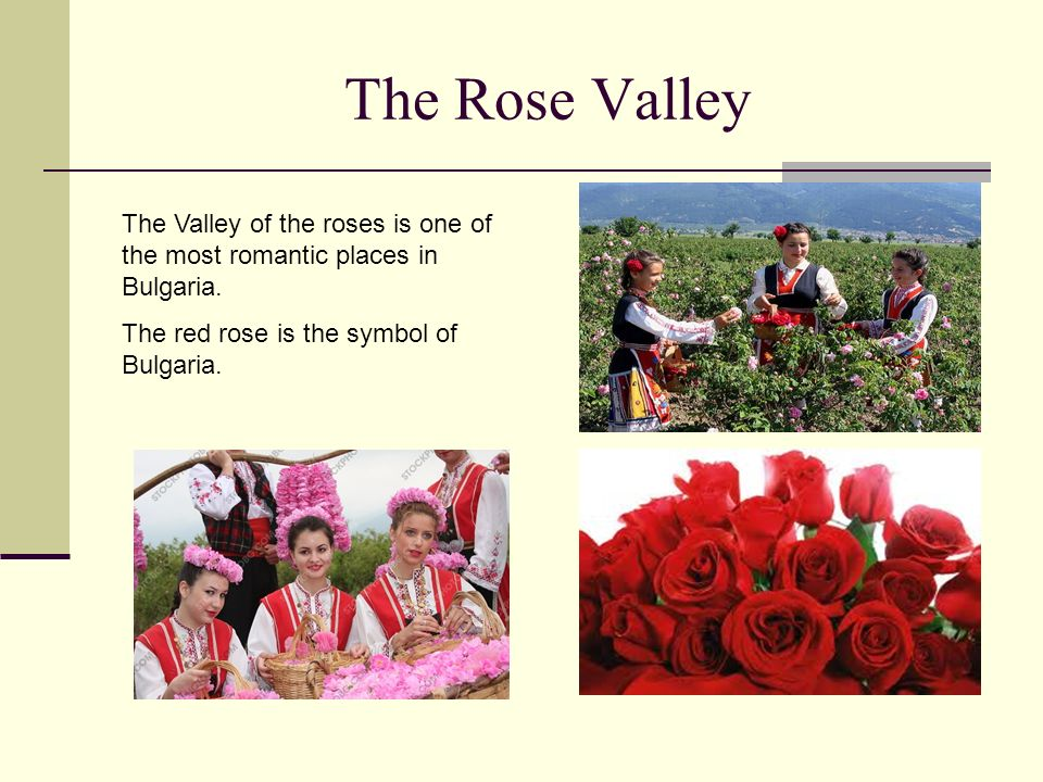 The Rose Valley The Valley of the roses is one of the most romantic places in Bulgaria.