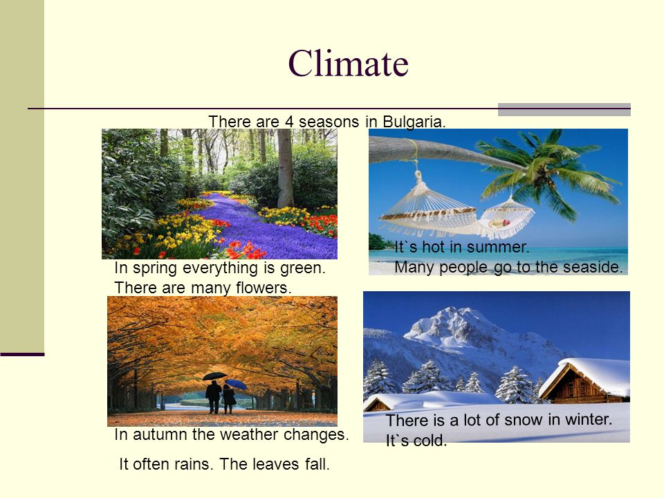 Climate There are 4 seasons in Bulgaria. It`s hot in summer.