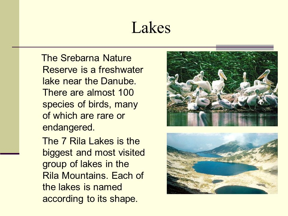 Lakes The Srebarna Nature Reserve is a freshwater lake near the Danube. There are almost 100 species of birds, many of which are rare or endangered.