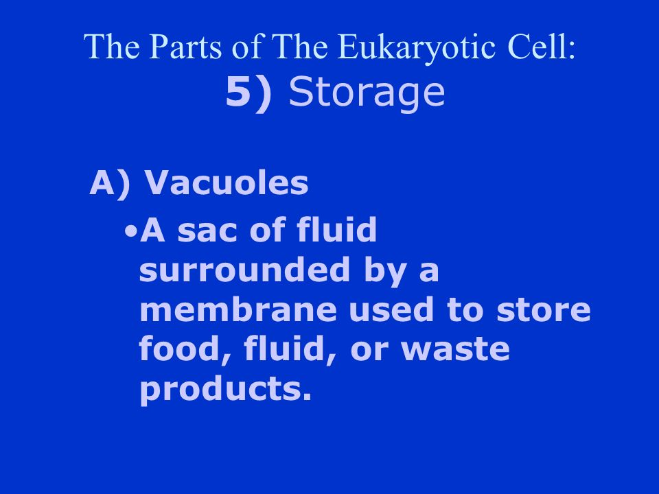 The Parts of The Eukaryotic Cell: 5) Storage