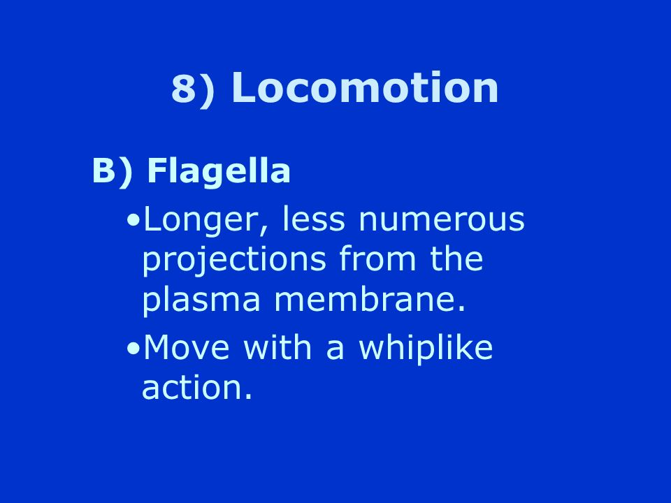 8) Locomotion B) Flagella