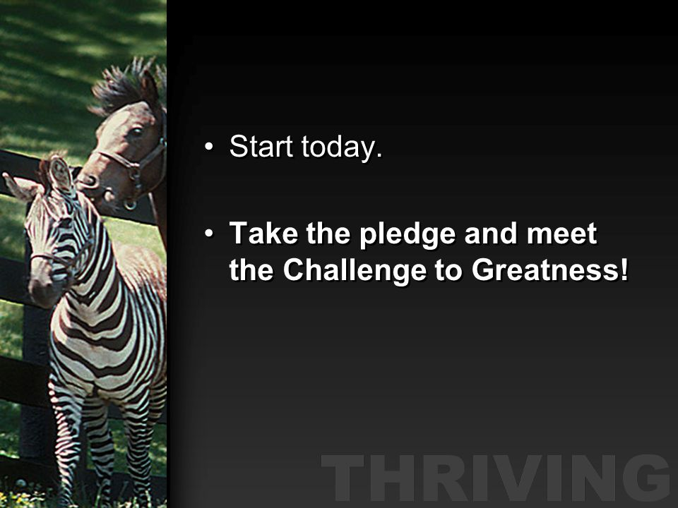 Start today. Take the pledge and meet the Challenge to Greatness!